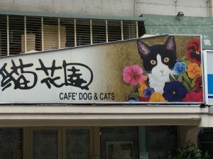 Cat Cafe 001