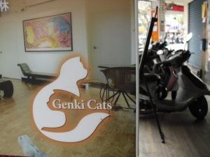 Genki Cats